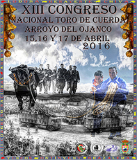 Cartel Congreso (Copiar)